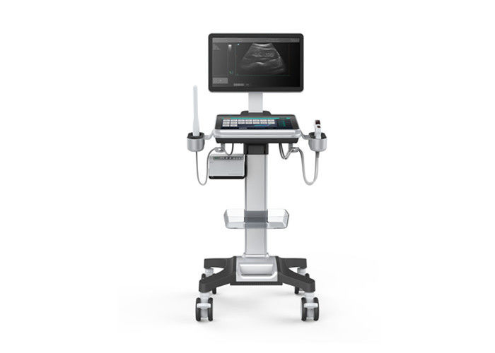 18.5 Inch LED Screen B/W Ultrasonic Diagnosis Device Trolley Ultrasound Scanner With Full Touch Screen Control Panel
