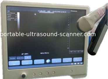 Veterinary Use Animal Ultrasound Scanner 15'' Touch Screen With 3 Probes Connectors 5MHz Rectal Probe for Cow