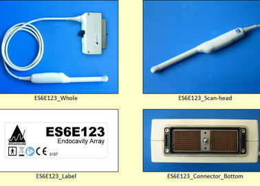 China Esaote Compatible Ultrasonic Transducer Probe Scan - Head New Ultrasound Replacement factory