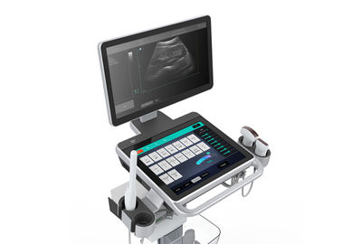 Windows 10 System(PC) 128GB Trolley Ultrasound Scanner  With 18.5 inch LED monitor