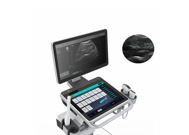 Economical Digital Trolley Ultrasound Scanner Cart B / W Ultrasound Scanner With 2 Probe Connectors 18 Inch LED Monitor